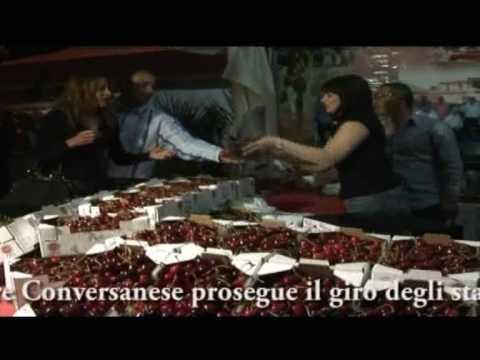 Martelli una goccia Torah per una potenzialità il sito web