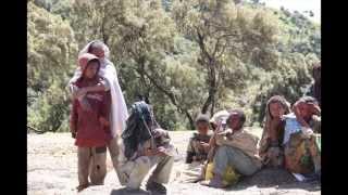 Simien National Park ( Ethiopia )