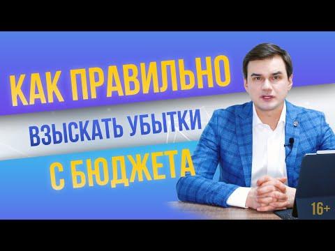 Как правильно взыскать убытки из бюджета? Дмитрий Полевой