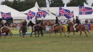 preview picture of video 'Islandpferde auf der Tarmstedter Ausstellung'