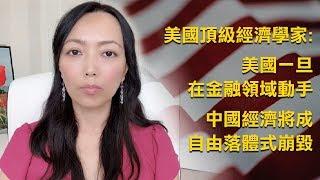 美國頂級經濟學家表示, 美國一旦在金融領域動手,中國經濟將成自由落體式崩毀