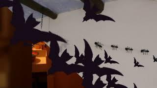 Video del alojamiento El Olivar de Las Pepinas