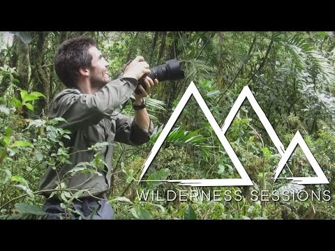 Flying Over The Cloud Forest of Mexico – Wilderness Sessions – Earth Unplugged