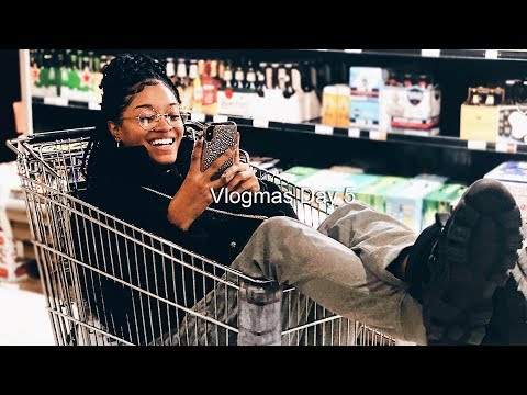 Instagram Q&A in Whole Foods, Life Update (Vlogmas Day 5)   Bri Hall