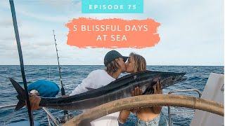 A Glamour of a Sail to Fiji 🥂~ Vlog 75
