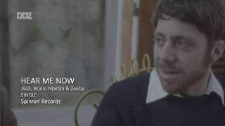 Hear Me Now (Alok, Bruno Martini feat. Zeeba) TRADUÇÃO