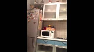 Котейка упал / кот смешно упал / кот упал с кухни