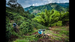 Exploring Coffee Trails - From Bean To Cup