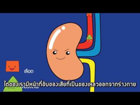 การรักษาเส้นเลือดขอดขนาดเล็กของกระดูกเชิงกราน
