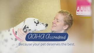 AAHA Accredited since 2012