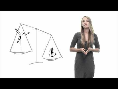 Tiksliųjų mokslų akcijų pasirinkimo sandoriai