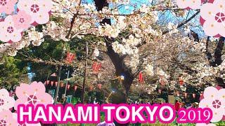 HANAMI A TOKYO