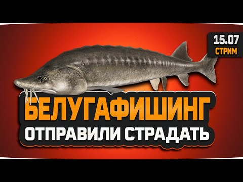 Русская рыбалка 4 — стрим на оз. старый острог