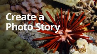 WeVideo Lesson: Create a Photo Story