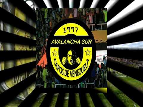 """ESTOY ENAMORADO DE TÁCHIRA // CÁNTICOS AURINEGROS // AVALANCHA SUR 1997 //"" Barra: Avalancha Sur • Club: Deportivo Táchira"