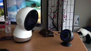 Face Off: Jibo versus Alexa (Echo Spot)