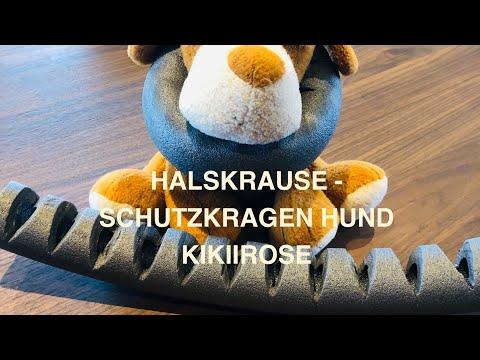 HALSKRAUSE - SCHUTZKRAGEN HUND -KIKIIROSE