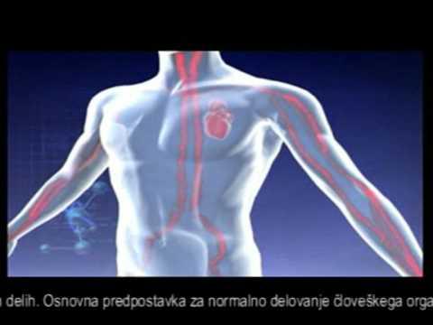 Velikost in oblika prostate