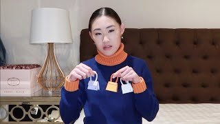 DESIGNER HANDBAG COLLECTION (MINI & MICRO BAGS): LOUIS VUITTON, FENDI, VALENTINO & MORE | JAIME XIE