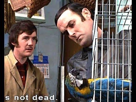 Monty Python - Mrtvý papoušek