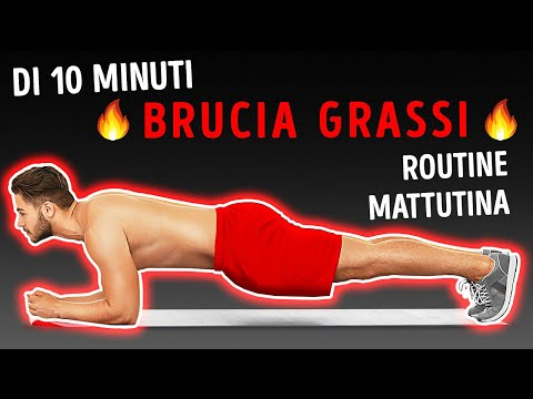 Bruciagrassi bg