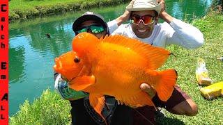 FISHING for MUTANT GIANT RIVER CHICKEN! **Not ClickBait**