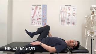Hip ROM Flexibility Exercises