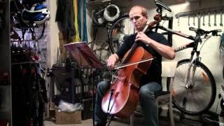 Populární orchestrální melodie (Popular Songs)
