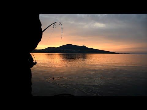 Lov kaprů na Pálavských jezerech - výzva ve vlnách