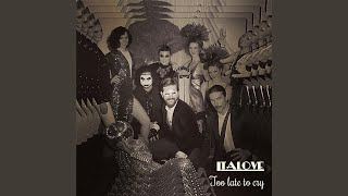 Too Late to Cry (Matt Pop Club)