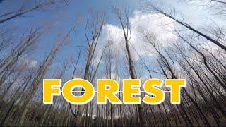 Forest proximity - fpv freestyle trick // Armattan Rooster // ImpulseRc APEX // 레이싱 드론 프리스타일 //