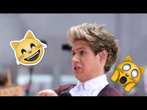 NIALL HORAN FUNNY MOMENTS 2017