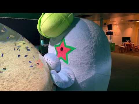 新屋島水族館【公式】新屋島水族館の生き物たち 〜ダイジェスト版〜