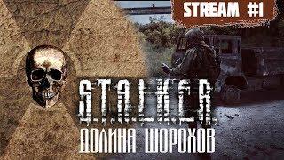 Шуршатель вышел пошуршать [#stalker #ДолинаШорохов episode 1]