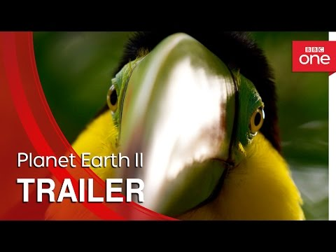 Commercial for BBC One, and Planet Earth II (2016 - 2017) (Television Commercial)