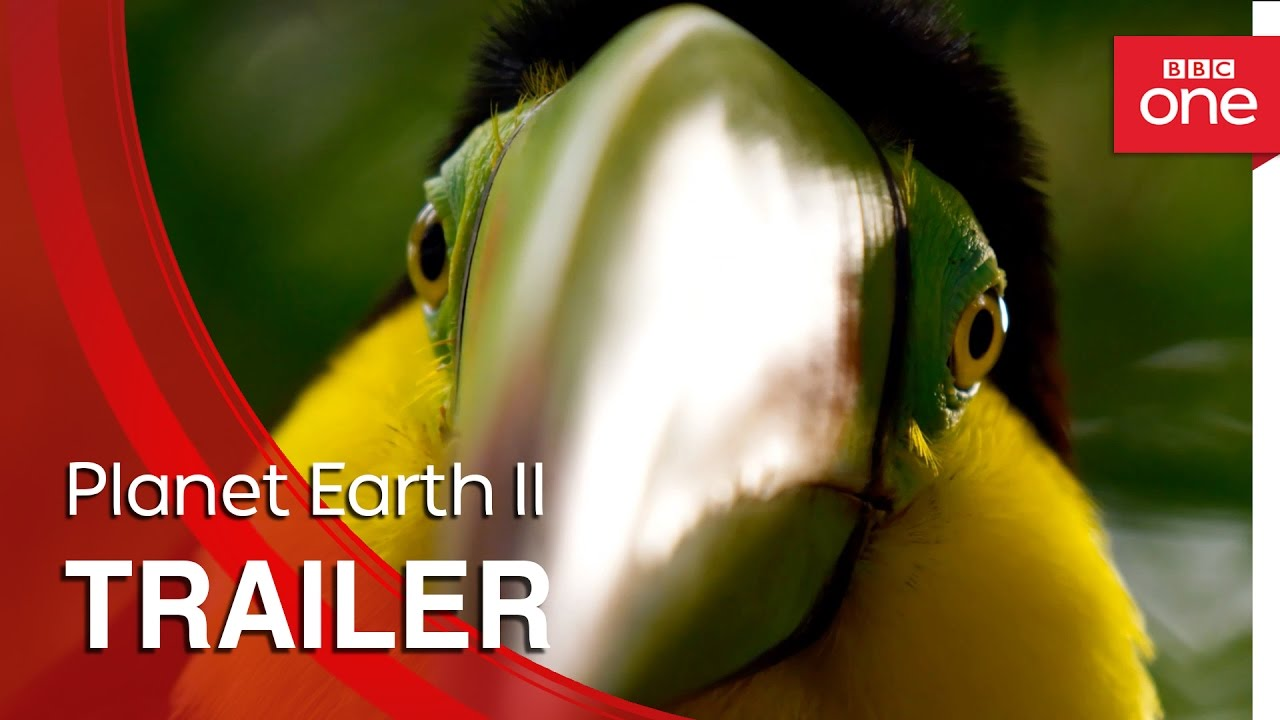 David Attenborough's Second Planet Earth Documentary Is Out Very Soon