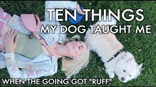 """Ten Things My Dog Taught Me When The Going Got """"Ruff"""" 🐶💜🤗"""