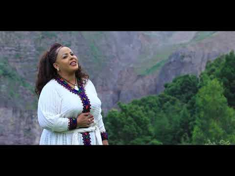 Download Amsal Mitike / ወይ ወሎ /  Ethiopian Music 2019 (Official Video) HD Mp4 3GP Video and MP3