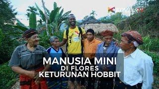 Download Video Manusia Mini di Flores Keturunan Hobbit MP3 3GP MP4