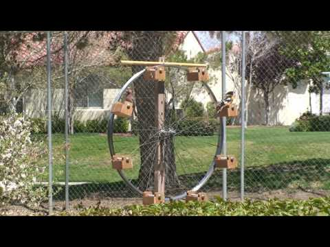 Ferris Wheel Bird Feeder