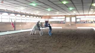 Sons Of The Wind Farm - Portuguese School Field Trip - Lusitano Horse - April 2012