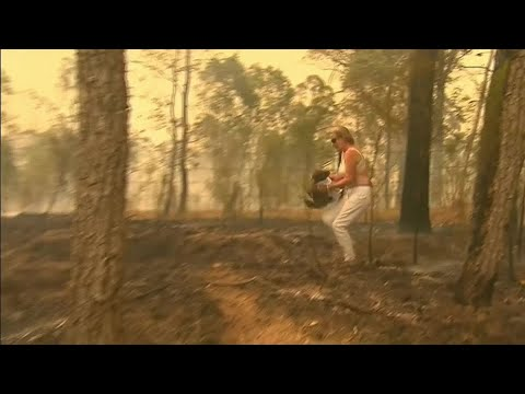 A badass woman took off her shirt and ran into a fire to save a Koala in the Australian Bushfires
