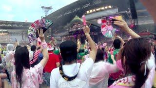 告知動画「ももクロ夏のバカ騒ぎ2014日産スタジアム大会~桃神祭~」LIVEBlu-ray&DVD/ももいろクローバーZMOMOIROCLOVERZ