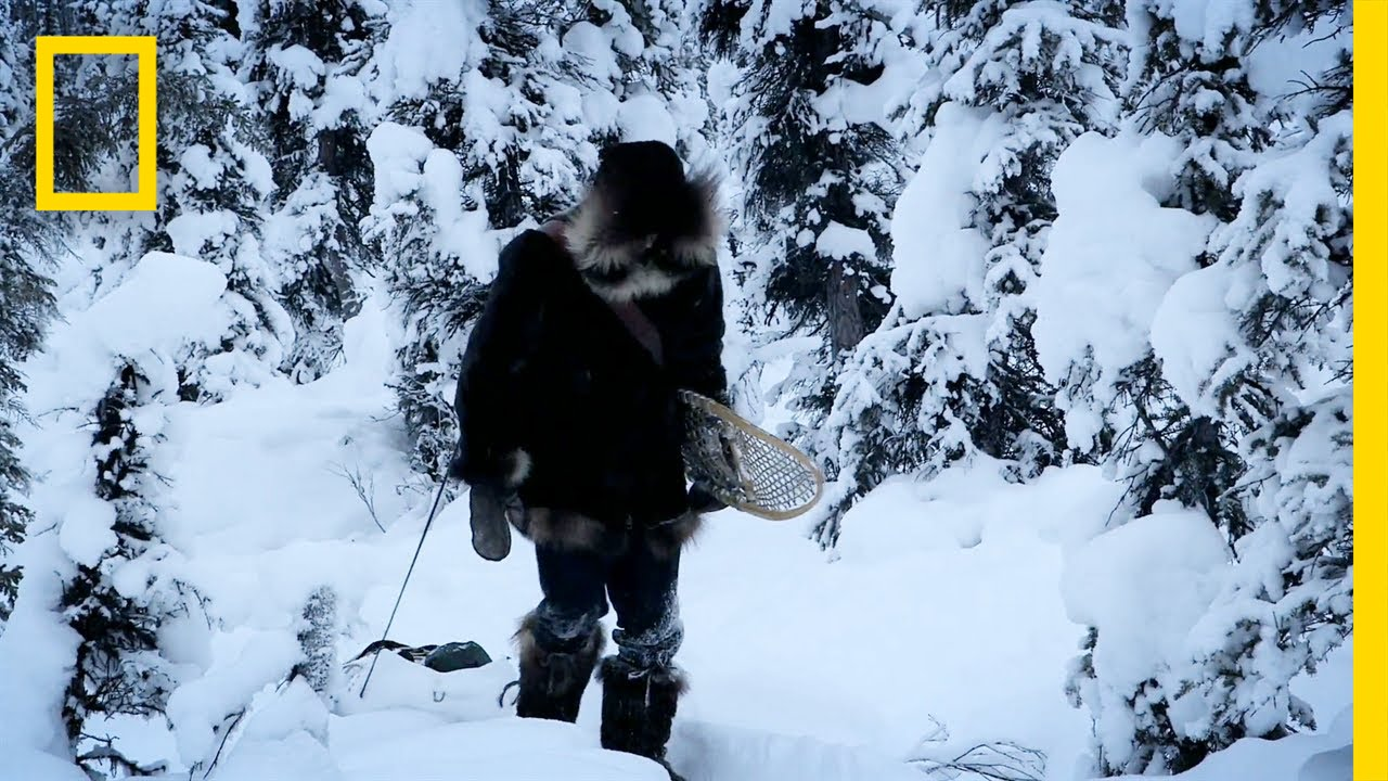 One Step at a Time | Life Below Zero thumbnail