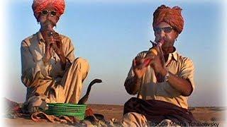 SNAKE CHARMER FLUTE -SOUND EFFECT SNAKE FOLK MUSIC FROM RAJASTHAN INDIA
