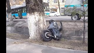 Мотоциклист врезался в Toyota, сбил знак и влетел в дерево. Вот такой Наурыз!