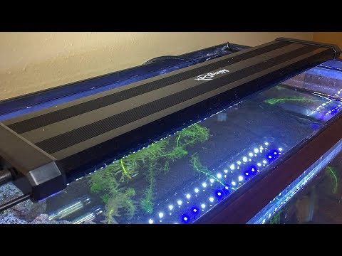 Mingdak LED Aquarium Light Unboxing and Review