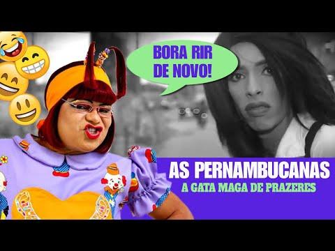 Bora Rir de Novo com A Gata Maga de Prazeres - Papeiro da Cinderela