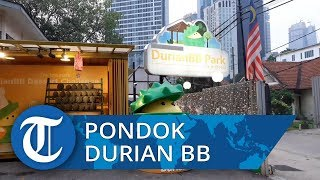 Mengunjungi Pondok Durian BB, Ini Tempat Makan Wajib bagi Pecinta Si Raja Buah Durian
