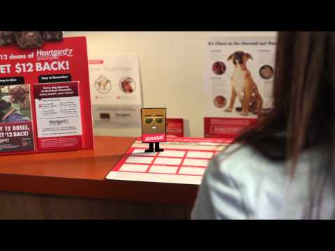 Heartgard Plus for Dogs - 51-100 lbs (1 Chew) Video